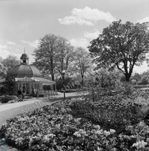 Harrogate, Valley Gardens, 1963